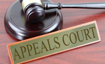 ערעור ברשות או בזכות על החלטות רשם הפטנטים (עליון)
